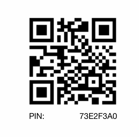 Blackberry Pin : 73E2F3A0