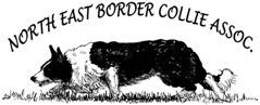 Northeast Border Collie Association