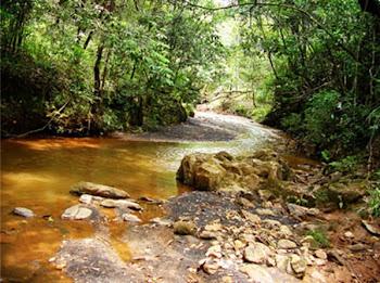A Umbanda e a Natureza