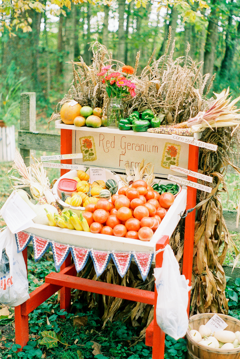 Fresh Produce Photography, Film Photography, Food Photography, Warsaw IN Film Photographer