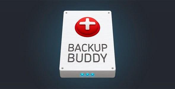 BackupBuddy Back up, restore and move - WordPress Plugin