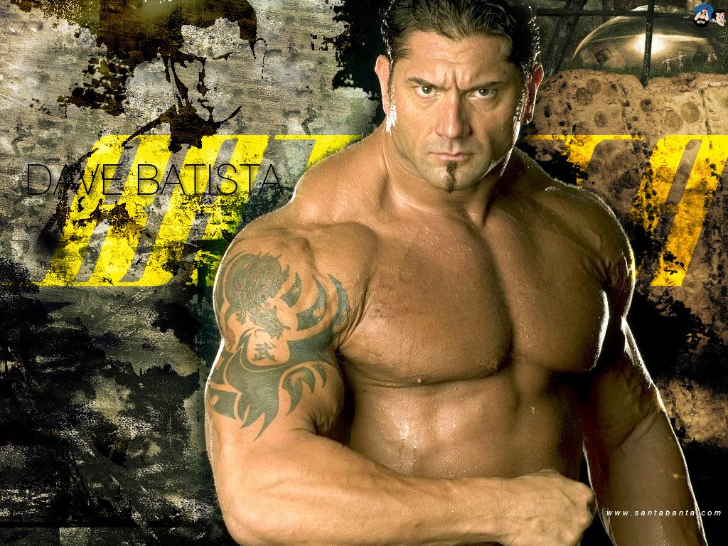 WWE CHAMPION 2011 dave batista