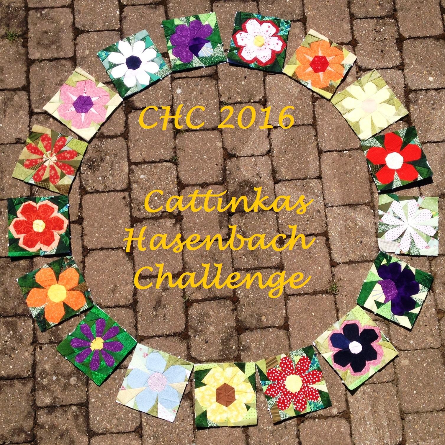 Hasenbach Challenge Blog