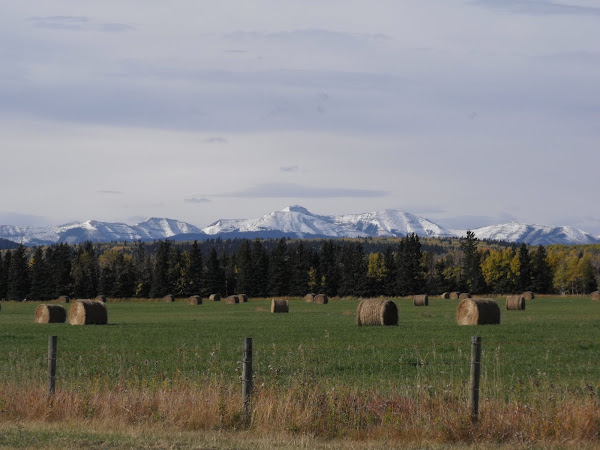 Hay Bales and Mountains! Life couldn't be any better!