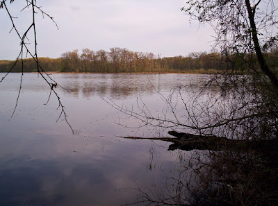 Image of Mill Lake in Waterloo Recreation Area.