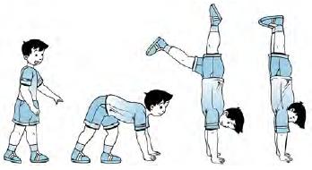 Teknik Latihan Keseimbangan Dengan Bertumpu Pada Selain ...