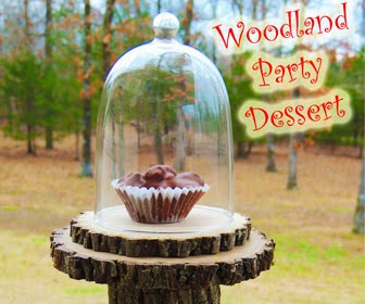 Woodland Birthday Party Theme Dessert Idea DIY Birthday Blog
