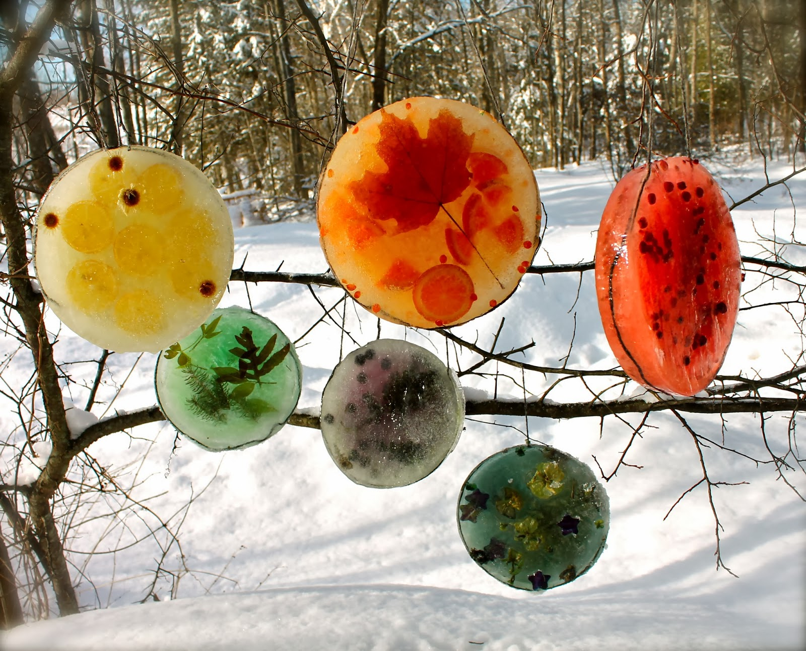 http://twigandtoadstool.blogspot.ca/2014/01/ice-rainbow-sun-catchers.html