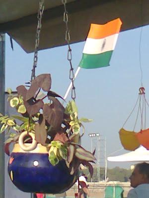 hanging garden plants india