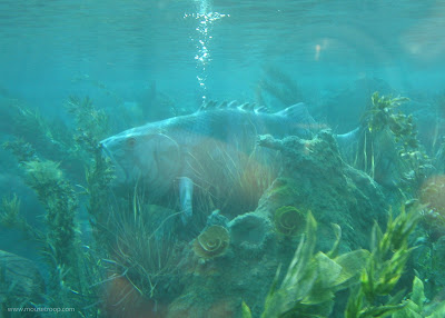 Finding Nemo Submarine Voyage Disneyland sub subs stuck stranded fish