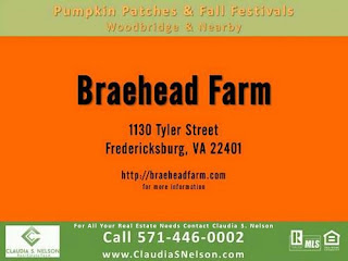 Pumpkin Patches near Woodbridge Virginia 2015, Braehead Farm