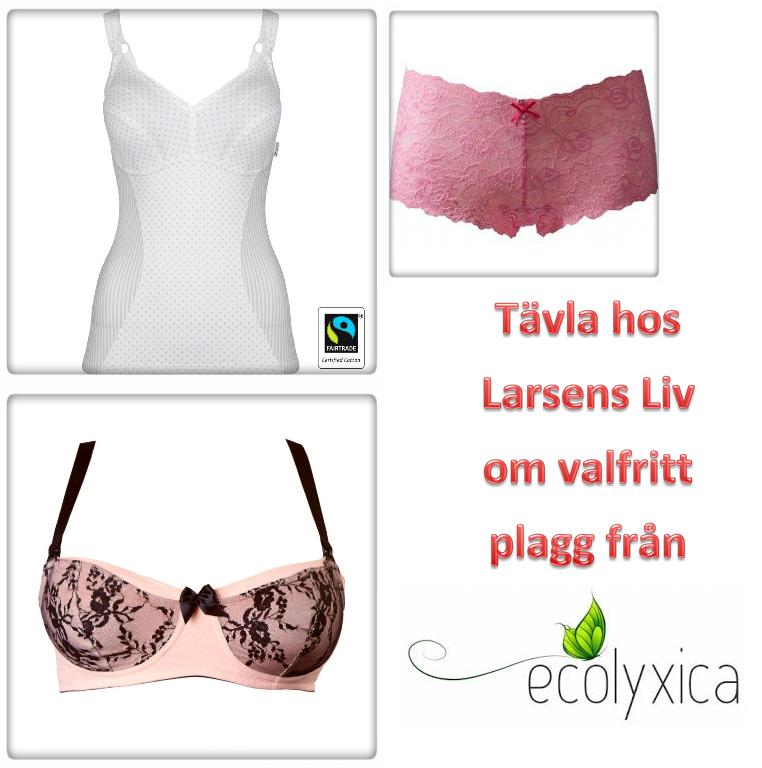 http://desiree1988.blogspot.com/2014/01/tavla-om-valfritt-plagg-fran-ecolyxica.html