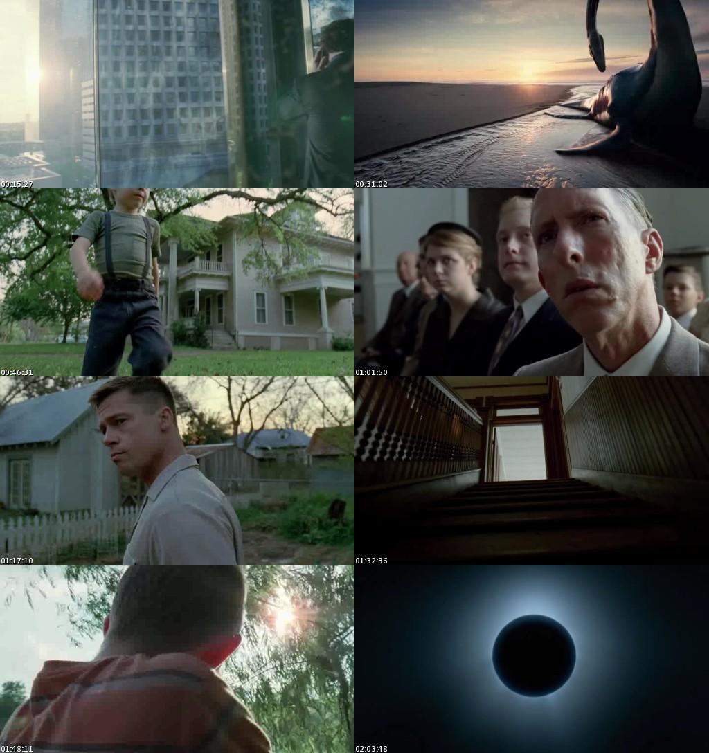 El árbol de la vida (2011) [BRScreener] [Español]