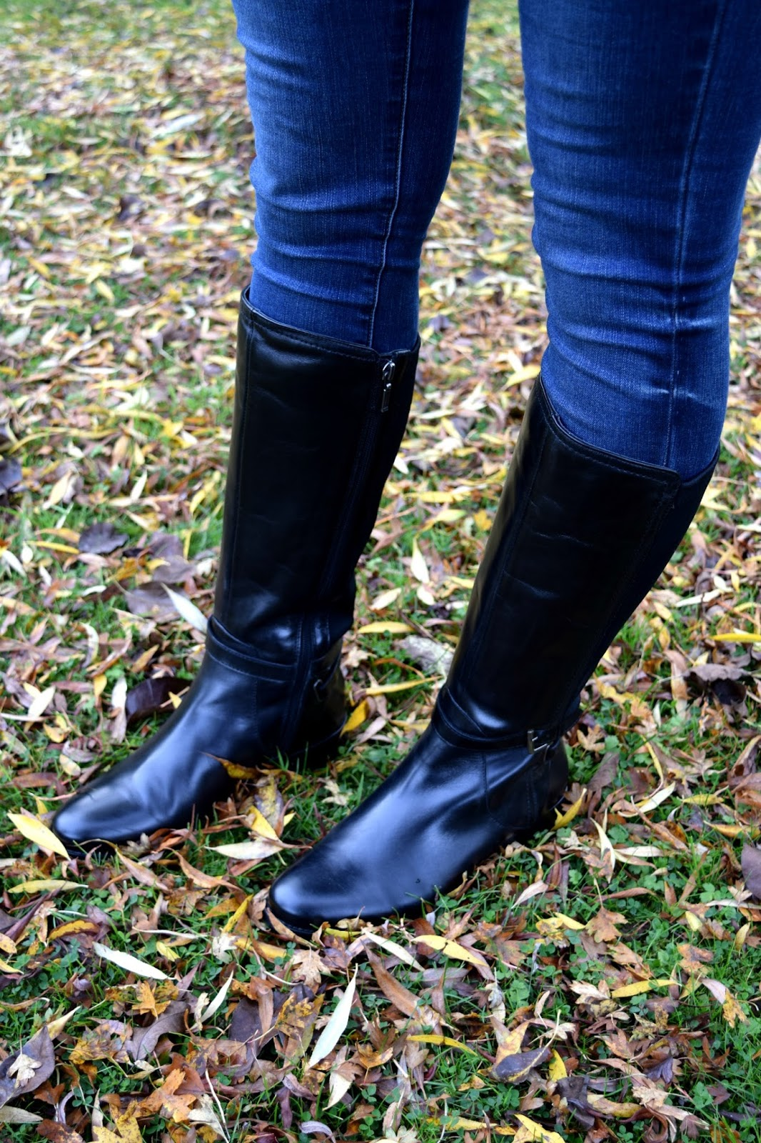 Riding boots Hotter Shoes