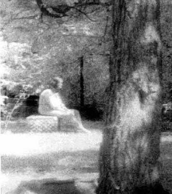 ghost of bachelor grove cemetery
