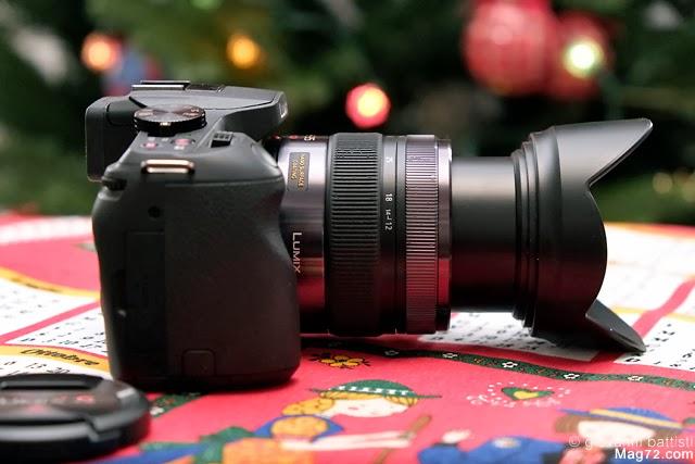 Fotografia dell'innesto del Panasonic G X Vario 12-35mm f2.8