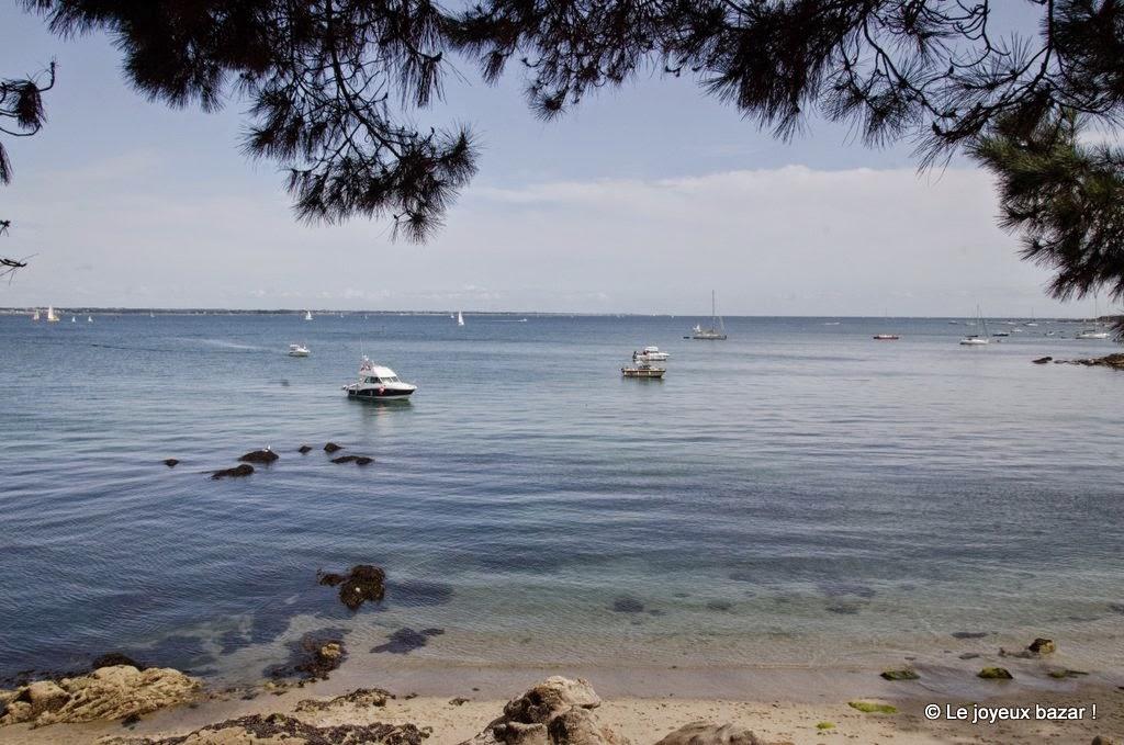 Bretagne - entre Cap Coz et Beg Meil