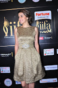 Taapsee photos at IIFA Utsavam 2016-thumbnail-8
