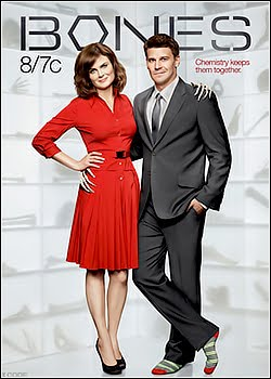 Download Bones Temporada Completa AVI  Dual Audio