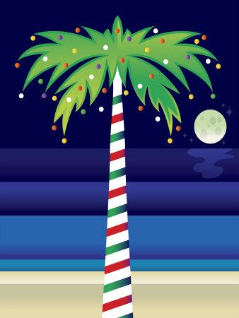 christmas palm trees phillip's