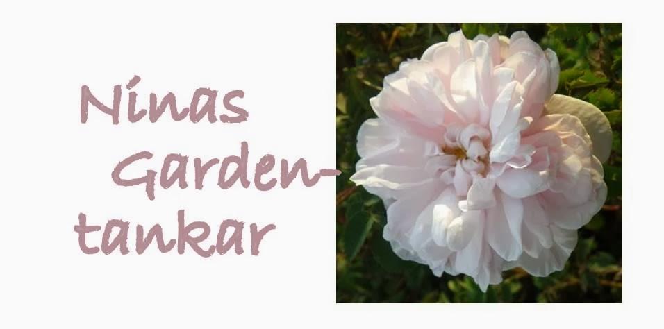 Ninas Gardentankar