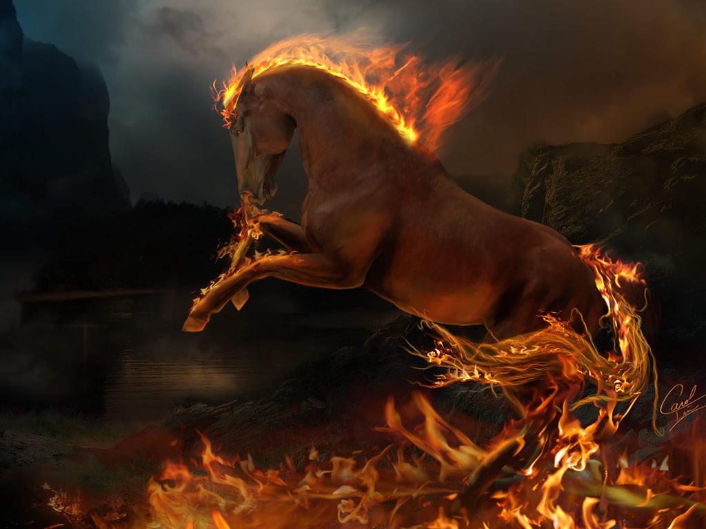 http://2.bp.blogspot.com/-sB3Uwrx7PkQ/TZmFEq6NDPI/AAAAAAAAAMs/bWFD381GzIc/s1600/3d-burning-horse-wallpaper-1024x768-1002022.jpg