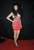 Saiyami Kher at Rey A to Z Look Launch-thumbnail-19