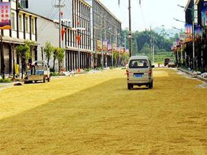 Όταν οι δρόμοι γεμίζουν ρύζι