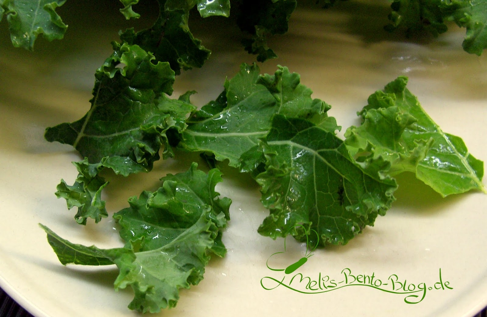 melis bento blog rezept 32 kale chips gr nkohl chips. Black Bedroom Furniture Sets. Home Design Ideas