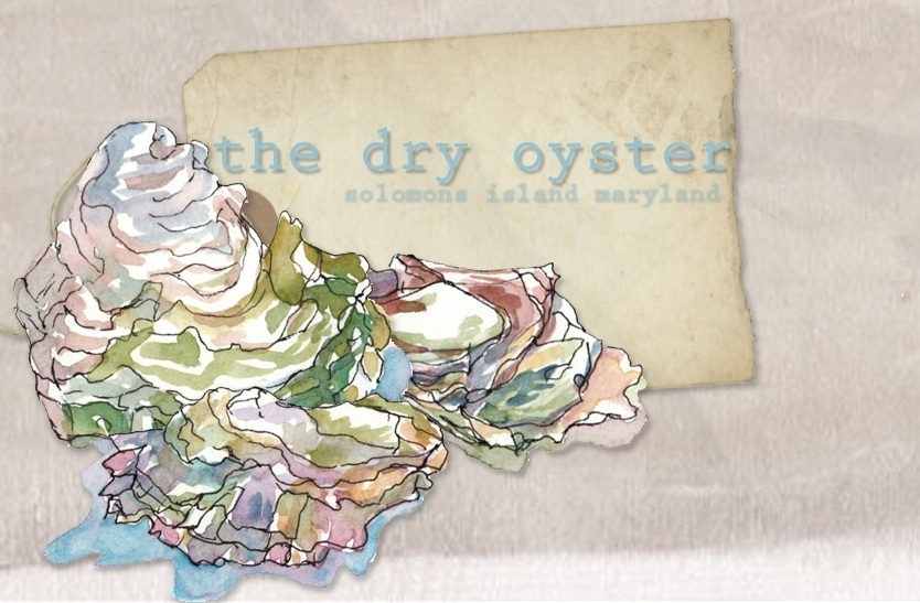 the dry oyster
