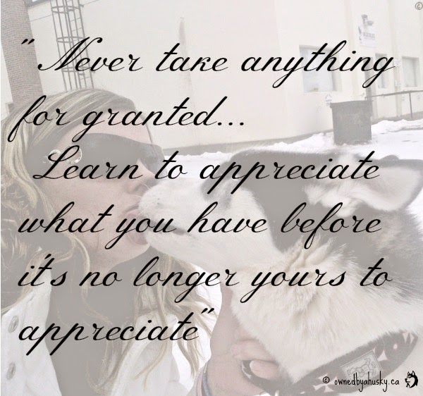 never take anything for granted quote
