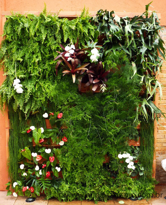 flores para jardim vertical na sombranestes casos as plantas são