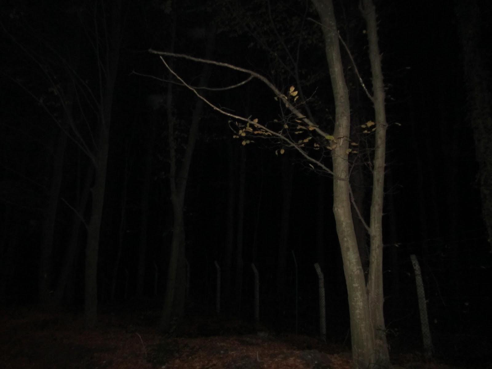 Gece fotoları