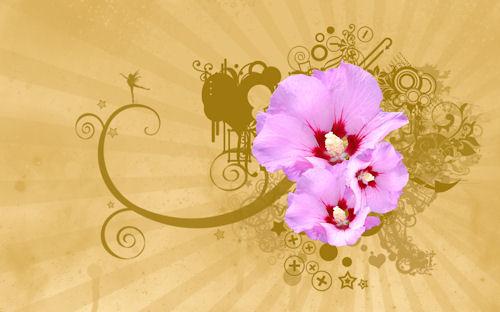 Flores y vectores