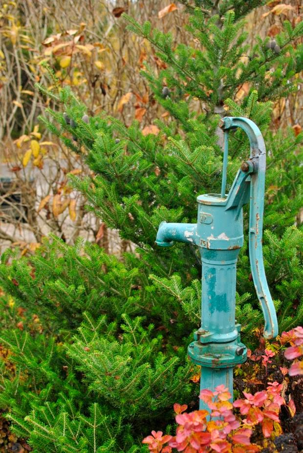trädgårdspump koreagran