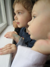 My little birdwatchers