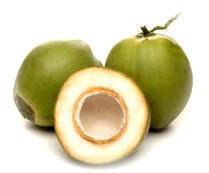 air kelapa muda.jpg