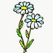 Ausmalbilder Blumen Blumen ausmalen Ausmalbilder  - frühlingsblumen malvorlagen