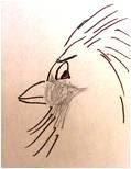 Angry Bird Very Angry Bird