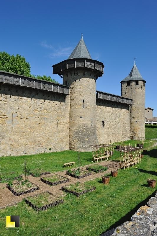 les carrés du jardin médiéval du château comtal de la citée de Carcassonne photo pascal blachier