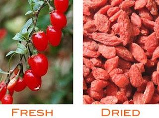 The Goji Berry (Gouqizi or Wolfberry) - एक प्राकर्तिक वरदान (औषधि)
