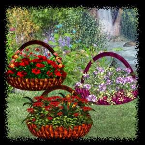 http://2.bp.blogspot.com/-sEbw05aY8ks/VQZLipvd8eI/AAAAAAAADII/7Zy8ROFA_Es/s1600/Mgtcs__Arrangemente_Baskets.jpg