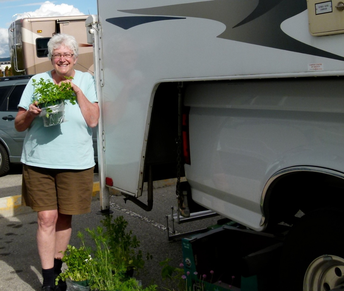 penny s tuppence 2 cents in brit dry camping solar