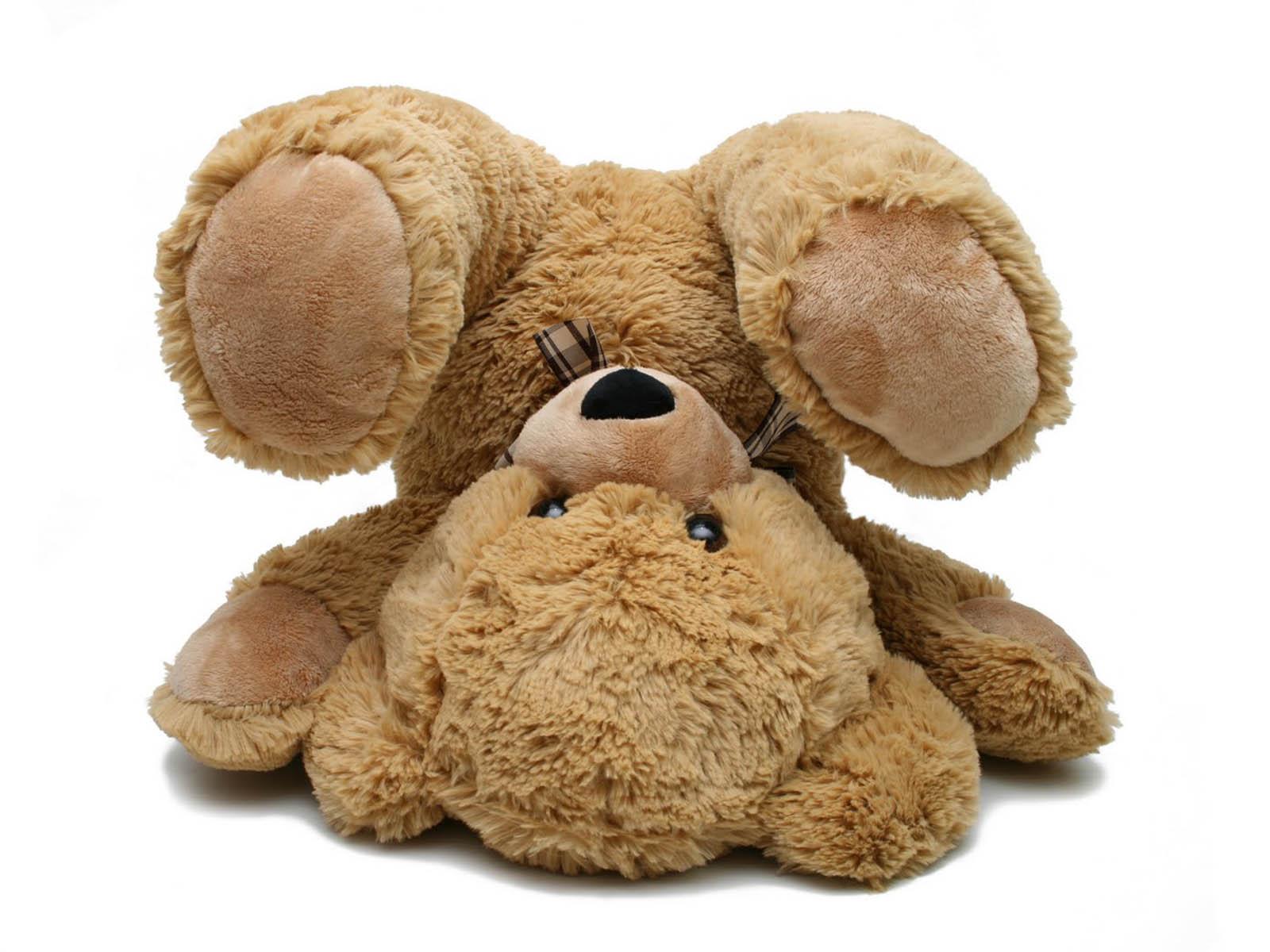 ... funny teddy...