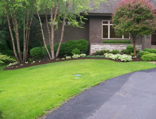 Landscaped Lawn-4