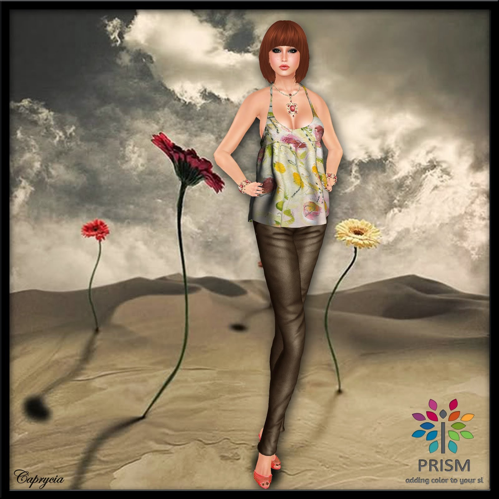 BLOGGER OF THE MONTH PRISM MARS 2014