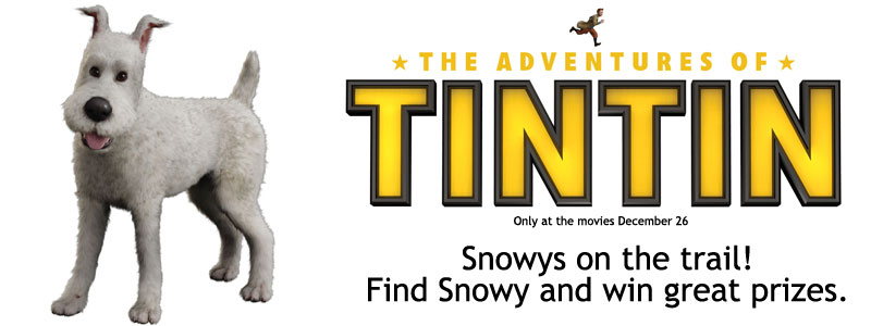 Rspca nsw blog snowys treasure hunt can you help tintin find snowy