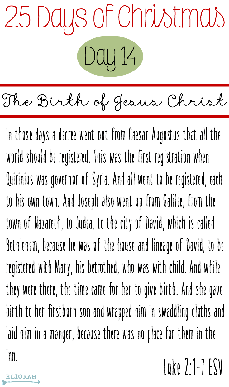 25 Days of Christmas: (Day 14) Luke 2:1-7