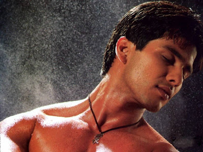 Shahid Kapoor Normal Resolution HD Wallpaper 13