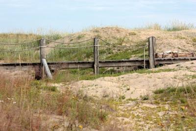 pitkospuut rannalle